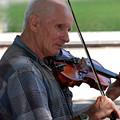 Musician In Central Park by Terri Creasy