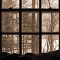 Muskoka Winter 7 by Kathi Shotwell
