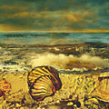 Mussels On The Beach by Anne Weirich