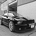 Mustang Alley In Black And White by Gill Billington