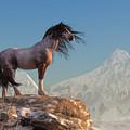 Mustang by Daniel Eskridge