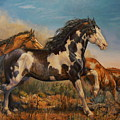 Mustangs On The Run by Kerry Nelson