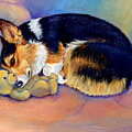My Baby Pembroke Welsh Corgi by Lyn Cook