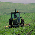 My Big Green Tractor by Garry McMichael