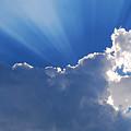 My Blue Heaven by Skip Willits