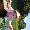 My Boat Guide For The Tour.  by Chuck Kuhn