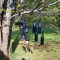 My Bottle Tree - Photograph by Jackie Mueller-Jones