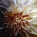 My Exotic Flower by Andrea N Hernandez