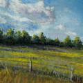 My Favorite Field by Susan Jenkins