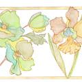 My Favourite Flowers by Eva Brejlova