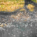 My First Manipulated Image Crowd Of Dandelions In Shadow Of Tree Branches by Bryce Fellbaum