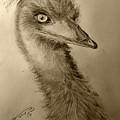 My Friend Emu by Jose A Gonzalez Jr
