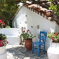 My Greek Garden by Yvonne Ayoub