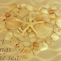 My Heart Belongs To The Sea by Angie Tirado