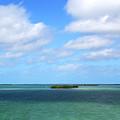 My Island In The Sand by Susanne Van Hulst