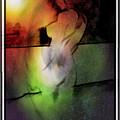My Lady Of The Stars by Mario Carini
