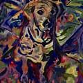 My Moso by Adair Robinson
