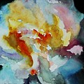 My Peonie by Tom Herrin