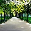 My Poet's Walk by Elizabeth Robinette Tyndall