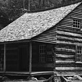 My Tennessee Home by David Lee Thompson
