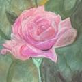 My Wild Irish Rose by Carole Clark