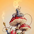 My Wonderland by Anthony Sanchez