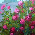 Myback Yard Roses by Patricia Kness