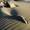 Myers Creek Beach Oregon 1 by Bob Christopher