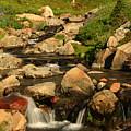 Myrtle Falls by Jessa Morissey