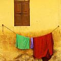 Mysore Wall by Derek Selander
