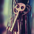 Mystery Keys by Ariadna De Raadt