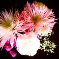 Mystery Of A Flower by Debra Lynch
