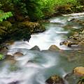 Mystic Creek by Marty Koch