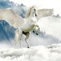 Mystic Unicorn by Joy of Life Arts Gallery