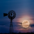 Mystical Moon by Bill Wakeley