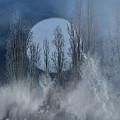 Mystical Moon by Karen  W Meyer