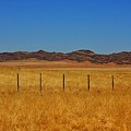 Namib Desert 3 by Stacie Gary