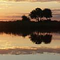 Namibia Nightfall by Karen Zuk Rosenblatt
