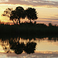 Namibia River Sunset by Karen Zuk Rosenblatt