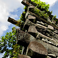 Nan Madol Wall by Dan Norton