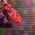 Nandina Berries Phil.4 V 8-9 by Linda Phelps