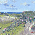 Nantucket June Dunes I by Candace Lovely