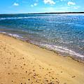 Nantucket Sound - Y1 by Carlos Diaz