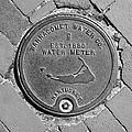 Nantucket Water Meter Cover by Charles Harden