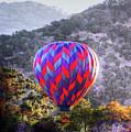 Napa Valley Morning Balloon by Ray Marcus