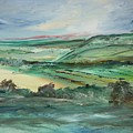 Napa Valley Vineyards by Edward Wolverton