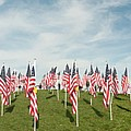 Naperville Healing Field Of Honor At Rotary Hill by Michael Bessler