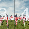 Naperville Healing Field Of Honor At Rotary Hill Panoramic Map by Michael Bessler