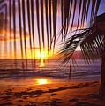 Napili Bay Sunset Maui Hawaii by Jim Cazel