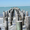 Naples Pier by Tom Reynen
